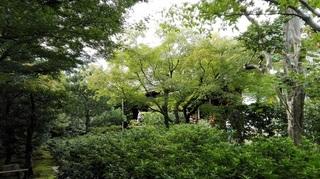 円徳院1.jpg