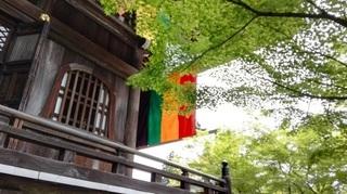 永観堂3.jpg
