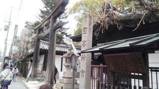 白峯神宮2.jpg