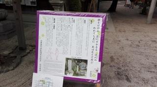 白峯神宮4.jpg